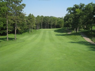 What is fairway and a rough?